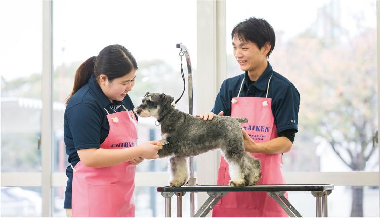 動物飼育コースでも犬のお手入れを習います。