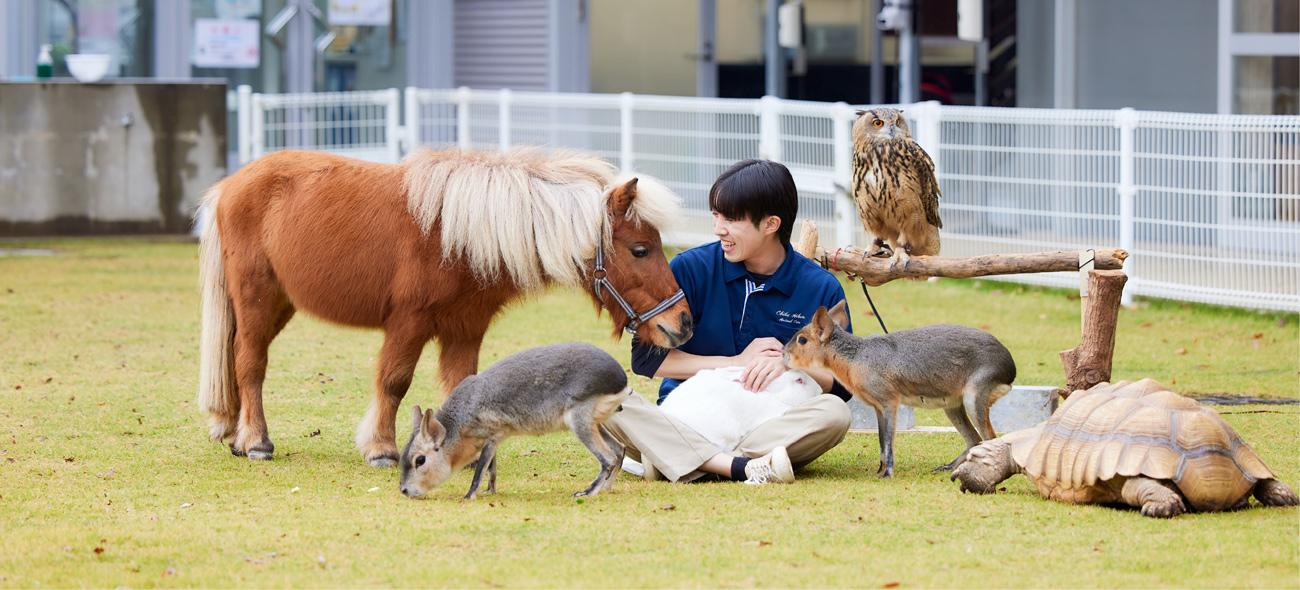 動物飼育コース