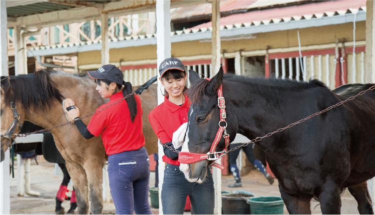 大切なパートナーである馬の世話や体調管理などもしっかり学びます。