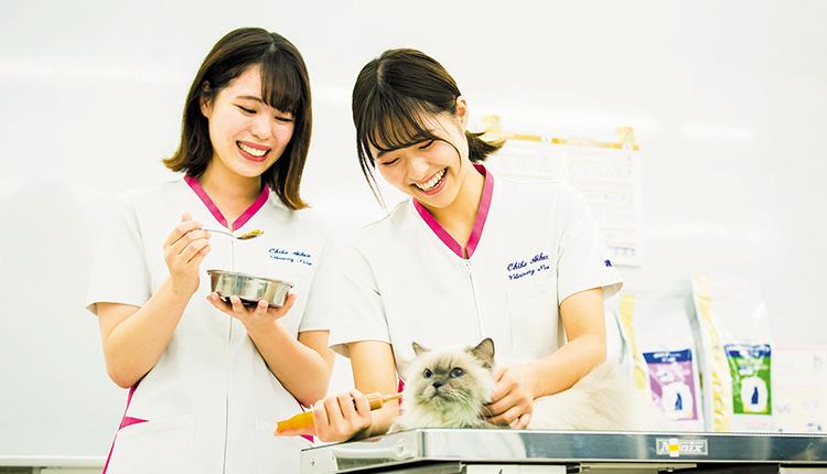 臨床動物栄養専攻で学ぶ