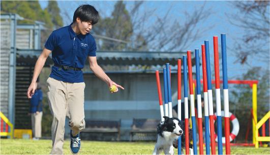 1万坪の広大なフィールドで人も犬ものびのびと学びます。