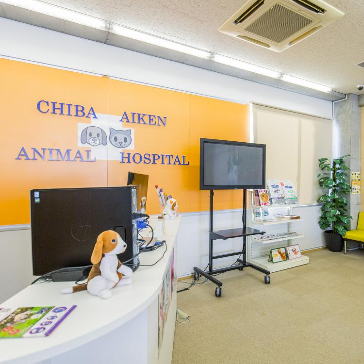 6F 動物病院受付 実習施設