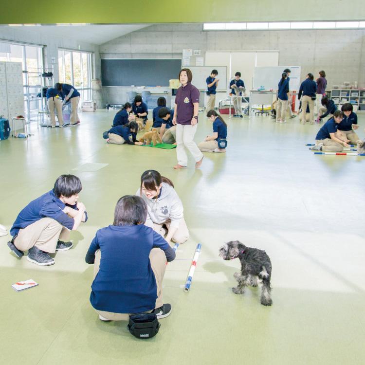 屋内トレーニング 実習室